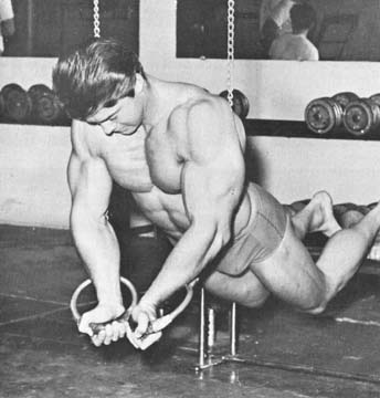 larry scott ring push ups