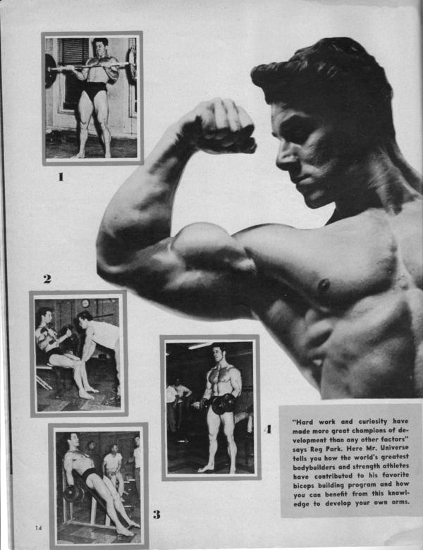 reg-park-biceps