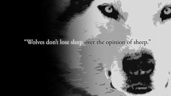 Wolf-Sheep-Opinions