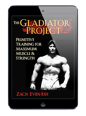 gladiatorprojectipad