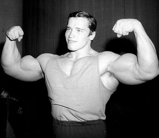 Young-Arnold-Biceps