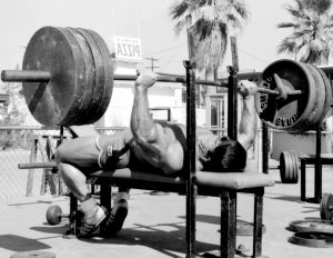 Does The Bench Press REALLY Matter?